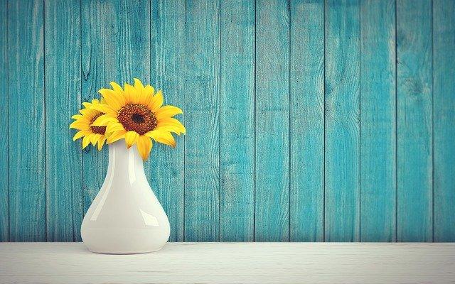 kwiaty doniczkowe do domu